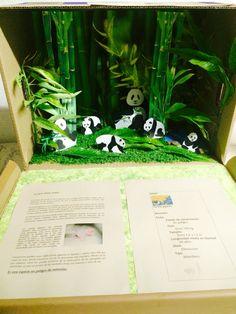 Panda's habitat diorama