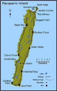 Resultado de imagem para Macquarie Island australia  MAPA