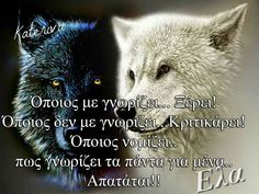Greek Quotes, My Memory, Picture Quotes, Of My Life, Clever, Wolf, Wisdom, Angel, Memories