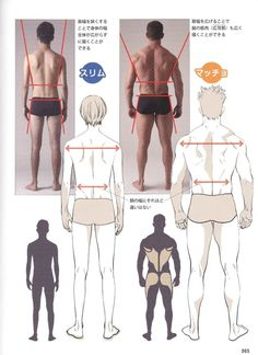 Reference Guide for Drawing Male Muscles – 160 photos Body Reference Drawing, Human Reference, Art Reference Poses, Anatomy Reference, Back Drawing, Guy Drawing, Drawing Tips, Drawing Muscles, Drawing Hair