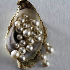 glowing pearls, oyster shell, delicate colors gems jewels mother of pearl Pearl And Diamond Ring, Pearl And Lace, Diamond Glitter, Irises, Pearl Jewelry, Gold Jewelry, Unique Jewelry, Krystal, Sea Shells
