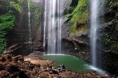 Air terjun Madakaripura adalah suatu air terjun yang terletak di Kecamatan Lumbang, Probolinggo