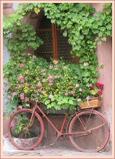 Decorative pink bike full of flowers