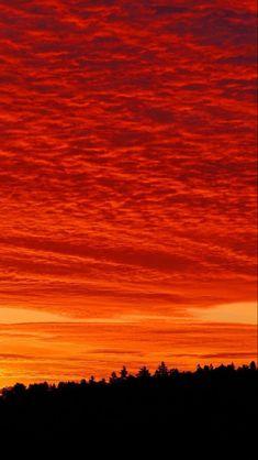 Landscape Wallpaper, Scenery Wallpaper, Nature Wallpaper, Mobile Wallpaper, Iphone Wallpaper, Orange Wallpaper, Summer Wallpaper, Orange Aesthetic, Sky Aesthetic