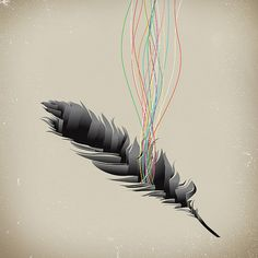 Deep Inside the Feather
