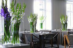 #hotel #Cubo #restaurant #gourmet #breakfast #lunch #dinner #dessert #food #foodie #fancy #modern #beautiful #fresh