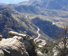 Mt Lemmon Highway  #Cycling #cycle #bike #biking #travel #fitness #travelling #traveling #USA #american #America #US #road #roads #roadbike #roadbiking #trips #tripstotake #MioGlobal #MioLINK #MioALPHA #roadcycling #mountains #outdoors #nature #outdoorcycling #outdoor #wilderness #beautiful #beautifyldestinations #fitnesstravel