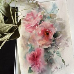 Roses Original Watercolor Painting, Pink Roses, Roses Painting, Watercolour Art by CanotStop on Etsy