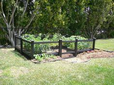 fencing for vegetable gardens | Vegetable Garden Fencing Designs