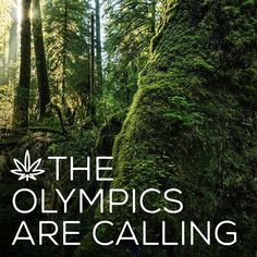 Answering that call? Swing by @therootcellars while you're at it.⠀ .⠀ .⠀ #kushtourism #cannabis #420 #travel
