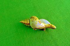 Vintage Rene Shell Brooch Item 1770 by LaylaBaylaJewelry on Etsy