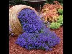 AUBRIETA ROYAL VIOLET, Rock Cress / Perennial / Deer Resistant / Ground Cover / Fragrant Flower Seeds - The Effective Pictures We Offer You About garden decoration wall A quality picture can tell you ma - Diy Garden, Dream Garden, Lawn And Garden, Garden Projects, Garden Planters, Herb Garden, Spring Garden, Tuscan Garden, Shade Garden