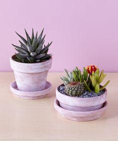 Whitewashed Terracotta Pots