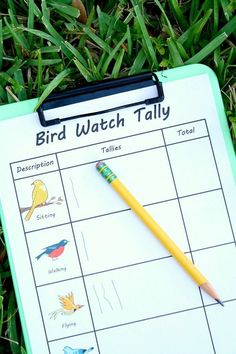 Free Printable Bird Watch Tally Sheet Head outdoors for a bird watch. Take along this free printable tally sheet to record your findings. Great for preschool and elementary kids! Nature Activities, Spring Activities, Science Activities, Activities For Kids, Science Experiments, Outdoor Activities, Outdoor Education, Outdoor Learning, Fun Learning