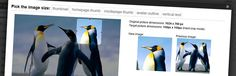Plugin allows you to manually crop all the image sizes registered in your WordPress theme (in particular featured image).