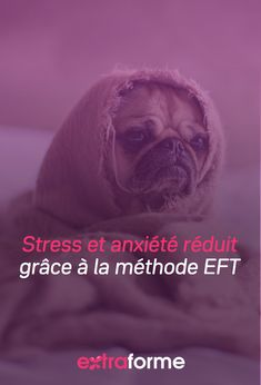 La méthode EFT permet une bonne régulation des hormones liées au stress. En pratiquant cette méthode donc, notre niveau de stress et d'anxiété est réduit ainsi que les troubles du sommeil et de la fatigue. Le Trouble, Fatigue, Relaxation, Ainsi, Sleep Issues, Stress Management