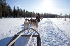 Lapland for kids – Santa not included