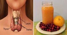 Υγεία - Ο θυρεοειδής αδένας λειτουργεί ως το κύριο κέντρο ελέγχου του σώματος, για αυτό το λόγο χρησιμοποιεί ενέργεια, ρυθμίζει τον τρόπο που ο οργανισμός δημιουργ