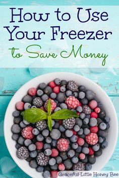 How to Use Your Freezer to Save Money