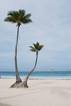 Relax in Punta Cana. VIK Arena Blanca Resort