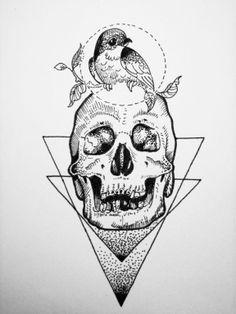 Cráneo y ave