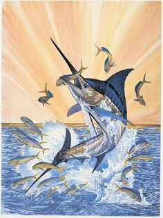 Guy Harvey 001