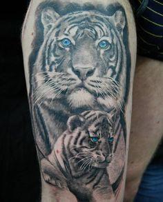 part done Tiger cub next session. White Tiger Tattoo, Big Cat Tattoo, Cubs Tattoo, Lioness Tattoo, Sick Tattoo, Black And Grey Tattoos, Brighton Tattoo, Celtic Knot Tattoo, Tiger Tattoo Design