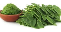 Have you ever heard of Moringa? If not, read on. It is becoming popular in the United States, both as a supplement and an ingredient in foods and beauty products. Moringa, from the Moringa oleifera tree, is a hardy plant that grows well … Protein Energy, Energy Bars, Different Types Of Cancer, Best Superfoods, Organic Superfoods, Miracle Tree, Moringa Leaves, Moringa Powder, Moringa Oleifera