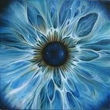 Resultado de imagen para iris del ojo hd