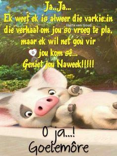 Good Morning Happy Friday, Good Morning Good Night, Good Morning Quotes, Happy Weekend, Sweet Quotes, Cute Quotes, Funny Quotes, Lekker Dag, Evening Greetings