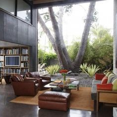 The great outdoors... inside your living room with a big picture window...