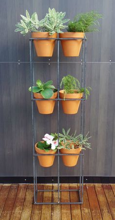 Vertical garden. Handmade steel frame with six terracotta pots.
