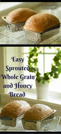THM Easy Sprouted Whole Grain and Honey Bread Machine Bread ( THM E) - Joyful Jane SUPER quick and easy method for making healthy bread and rolls FAST! So soft and fluffy!  Great for Trim Healthy Mama!