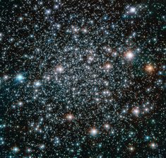 Hubble Rocks with a Heavy-Metal Home : This globular cluster, NGC is home to heavy-metal stars of a celestial kind! The stars comprising this spectacular spherical cluster. Cosmos, Carl Sagan, Heavy Metal, Globular Cluster, Hubble Images, Hubble Space Telescope, Telescope Images, Metal Stars, Space Photos