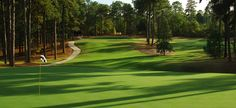 The town of Pinehurst is so much more than a golf resort, and you'll want to see why! Pinehurst Golf, Pinehurst Resort, Public Golf Courses, Best Golf Courses, Golf Hotel, Augusta Golf, Coeur D Alene Resort, Golf Course Reviews, Golf Photography