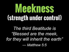 """Meekness(strength under control) The third Beatitude is """"Blessed are the meek, for they will inherit the earth"""" — Matthew Youth Bible Study Lessons, Spirit Meaning, Book Of Matthew, Powerful Quotes, Bible Verses Quotes, Names Of Jesus, Teaching, Words"""