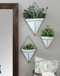 Ceramic Wall Planters, Hanging Planters, Wall Hanging Plants Indoor, Succulent Wall Planter, Concrete Planters, Succulents Garden, Garden Planters, Succulents Drawing, Indoor Succulents