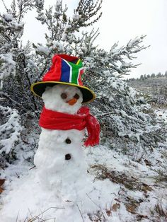 Irene Nell : My proudly SA snowman (Ceres)