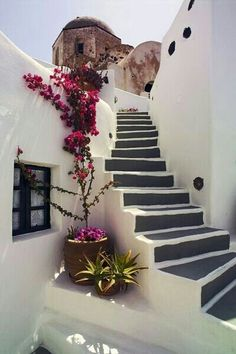 White concrete and pink natural accents.