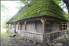 Dream Properties, Vernacular Architecture, Unusual Homes, Forest House, Moldova, Wooden House, Historical Pictures, Log Homes, Traditional House