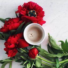 ・.●. ・ Do you realize that is the last day of spring? Tomorrow we will wake up in the summer . Любуюсь цими багряними півоніями...це так добре, коли твої люди, знають, що незвичний колір квітів, буде гарним на фото ❤