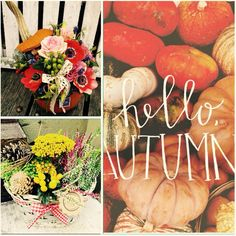 Autumn, Fall, Pumpkin, Table Decorations, Vegetables, Flowers, Home Decor, Pumpkins, Decoration Home