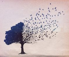 Oh i love trees, i would totally tattoo this on me somewhere.