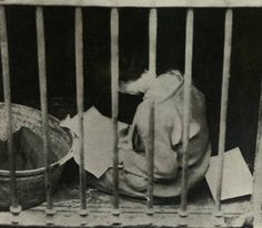 Countess Markievicz, Irish Citizen Army, in a temporary basement cell following her detention Easter Rising, Women's History, Citizen, Old Photos, Basement, Irish, Past, Celebration, Army