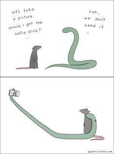 Funny Light-Hearted Animal Comics