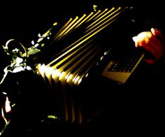 piano accordianista,  Bronwyn of Them Particles, live at the Bohemian, Joburg
