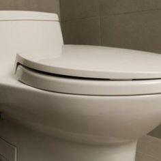 Salt is a natural way to unclog a toilet.