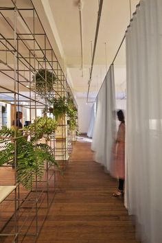 themeing - wireframe partition wall - planter, books, objects, lighting etc.