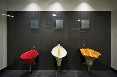 "Floral Urinals - McCabe Design Group  Somehow the phrase doesn't hold up for this one,,,""A rose by any other name..."""