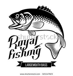 Image result for fish illustration